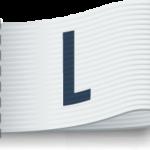大碼 (L)